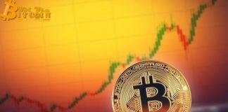 7 lần biến động giá huyền thoại của Bitcoin