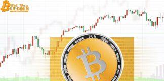 Hard fork Bitcoin Cash sẽ khiến giá sụt giảm?