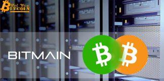 Bitcoin Cash thất thủ, Bitmain lỗ nặng trong quý 3/2018