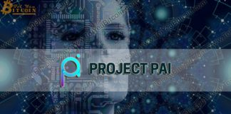 Project PAI