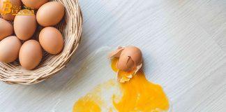"""Nghiên cứu của Binance: Ripple (XRP) là lựa chọn tốt để tránh """"bỏ hết trứng vào một rổ"""""""