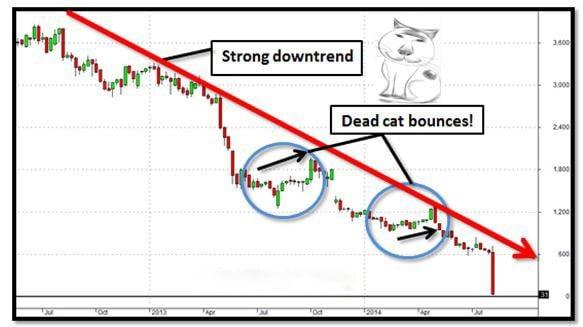 Một đợt tăng giá tạm thời trong thị trường giá giảm kéo dài.
