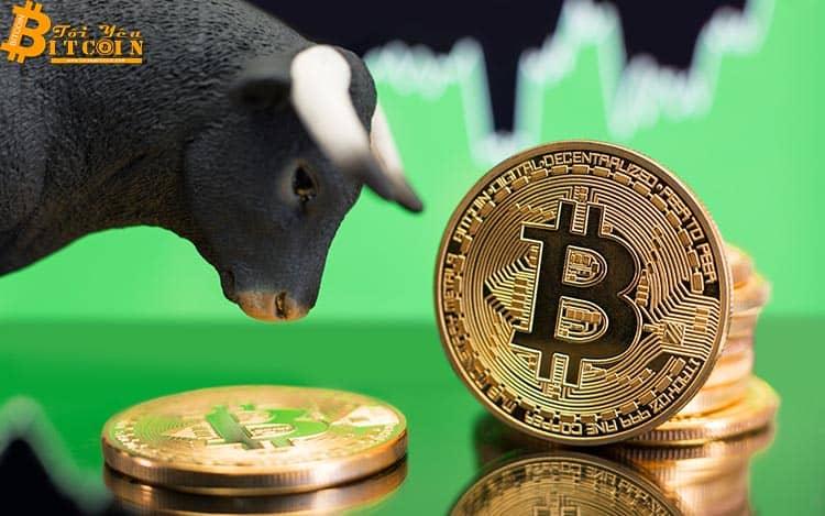 Nhà phân tích tin rằng Bitcoin sẽ giảm xuống $8.500 trước khi tăng lên $13.800