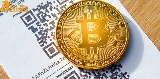 Gần 4 triệu Bitcoin chưa được dịch chuyển trong 5 năm
