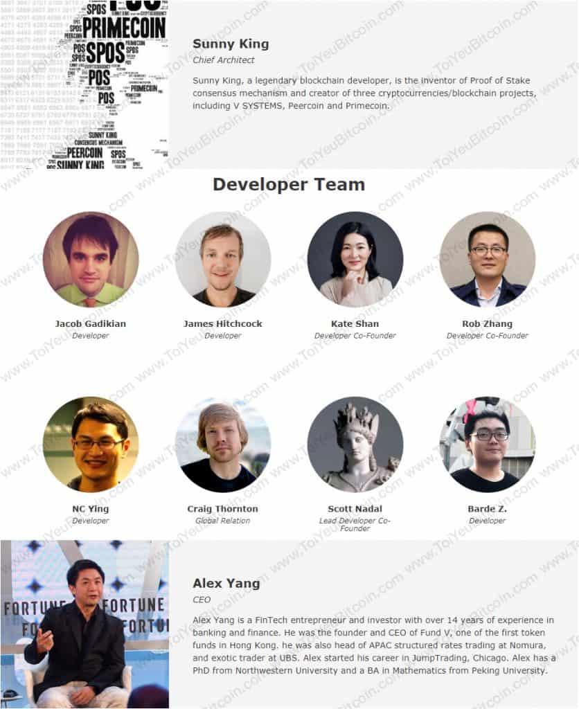 V Systems Team