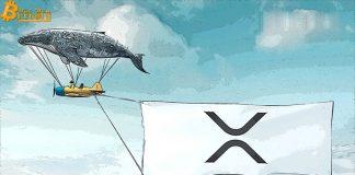 100.000.000 XRP được di chuyển từ cá voi bí ẩn
