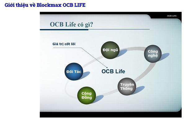 Một trang quảng cáo về OCB Life Group OCB với OCB Blockmax trên thị trường crypto khiến khách hàng nhầm lẫn đây là nhãn hiệu Tập đoàn thuộc hoặc liên quan đến Ngân hàng Phương Đông (OCB)