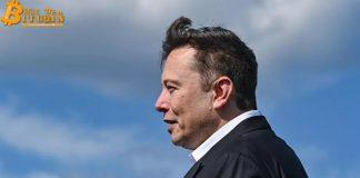 'Hiệu ứng Elon Musk' phơi bày rủi ro của Bitcoin