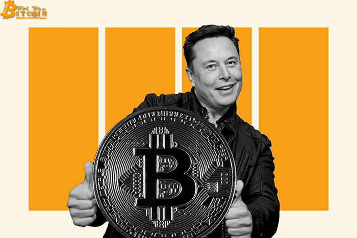 Elon Musk đang tìm cách cứu Bitcoin