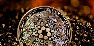 Peter Brandt cảnh báo Cardano (ADA) có thể giảm 60%-90%