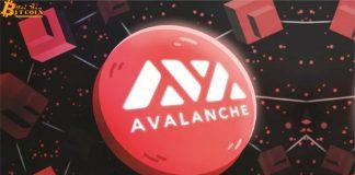 Avalanche nhận đầu tư 230 triệu usd để hỗ trợ hệ sinh thái DeFi, giá AVAX lập đỉnh mới