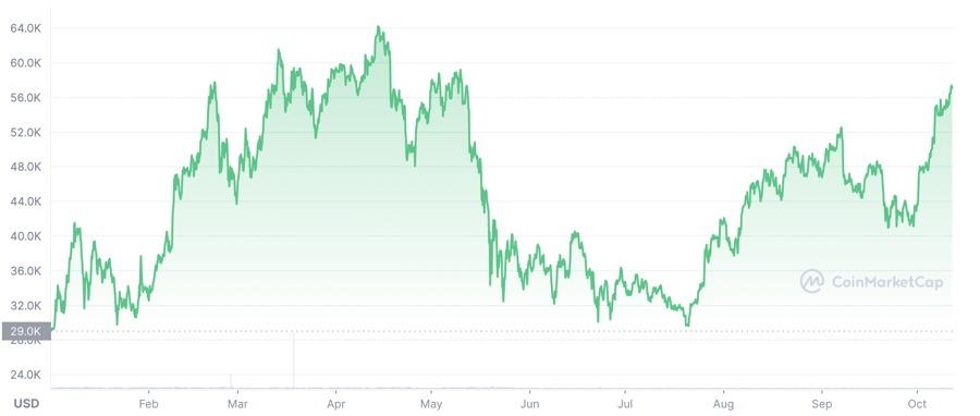 Diễn biến giá Bitcoin từ đầu năm đến nay.